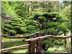Der Japanese Tea Garden Im Golden Gate Park San Francisco