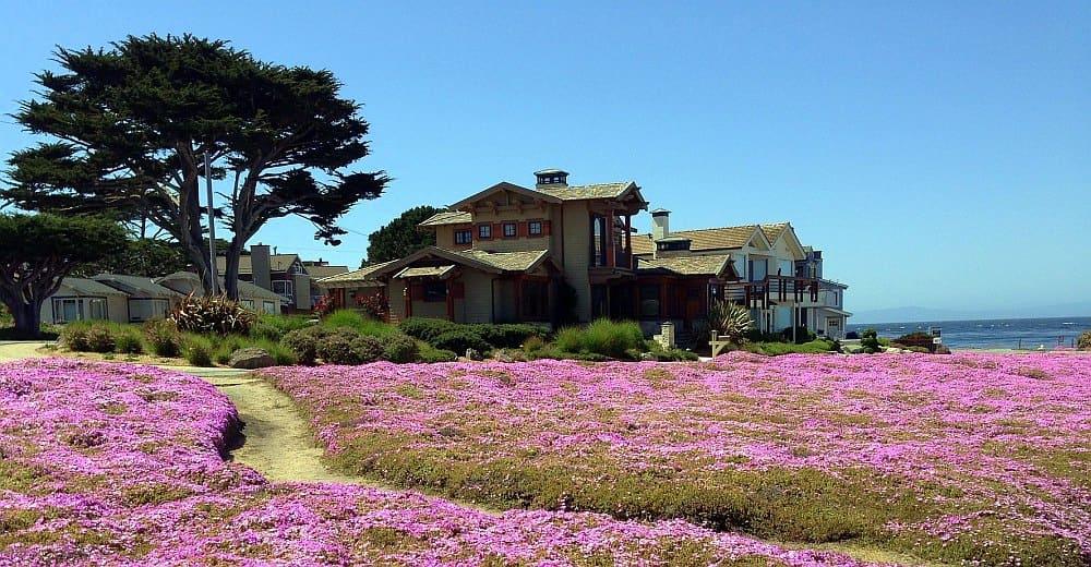 Monterey Ausflugsziele Ab San Francisco