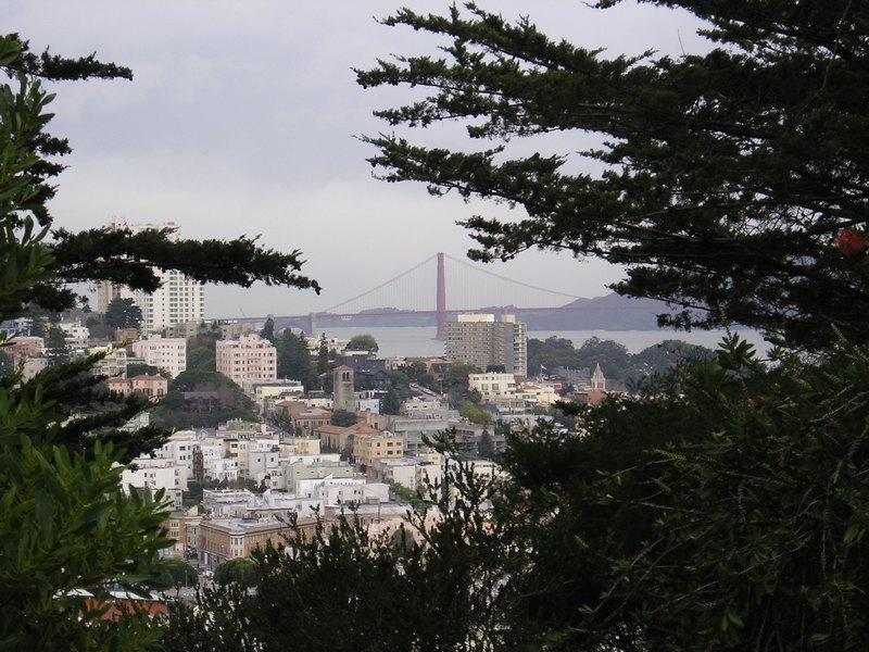 Vom Coit Tower aus,zur Golden Gate Bridge